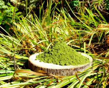 How Kratom is Made